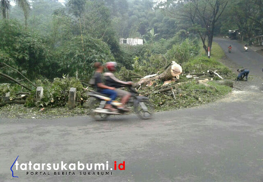 Pohon Tumbang Tutup Jalan Alternatif Jelegong Nagrak - Sukabumi