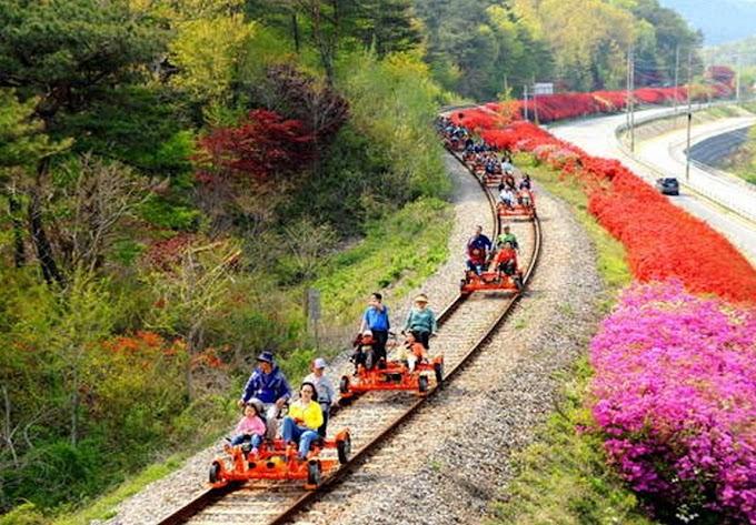 Gangchon Rail Bike di Korea Selatan