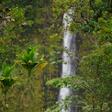 06-23-13 Big Island Waterfalls, Travel to Kauai - IMGP8859.JPG