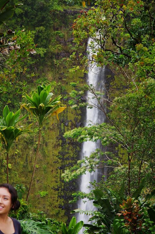 06-23-13 Big Island Waterfalls, Travel to Kauai - IMGP8859.JPG