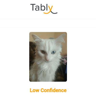 На данный момент блох IT-шника присоединился к тестированию Tably и в ближайшее время наш специалист по искусственному интеллекту предоставит подробный отчет об эффективности приложения.