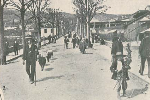 lamego_1913.png
