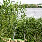 20140603_Fishing_BasivKut_011.jpg