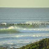 _DSC7360.thumb.jpg