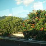 Hawaii Day 3 - 114_1150.JPG