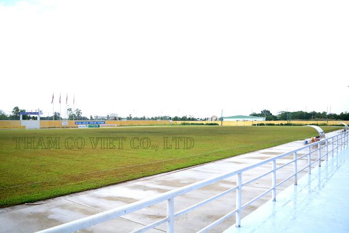 sân bóng cỏ tự nhiên