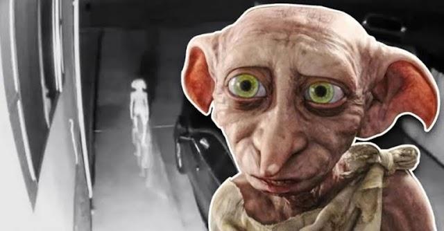 Quiz – Você sabe tudo sobre o Dobby de Harry Potter?