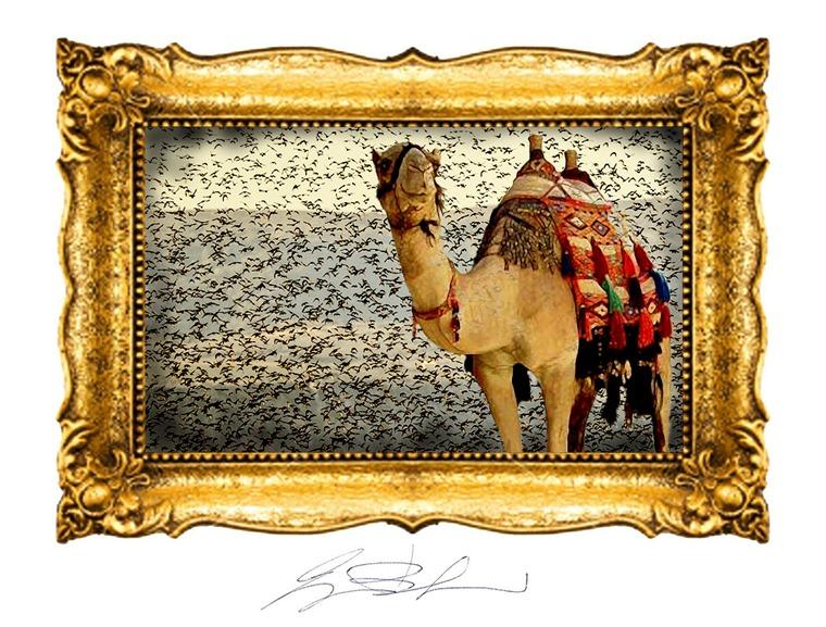 Carovana di Natale