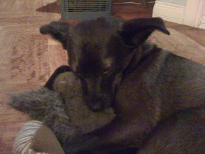 Photo: Malia sleeping with her pet squirrel
