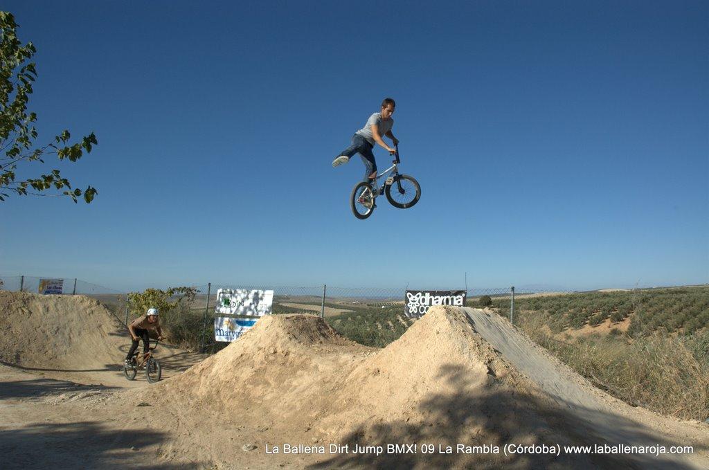 Ballena Dirt Jump BMX 2009 - BMX_09_0068.jpg