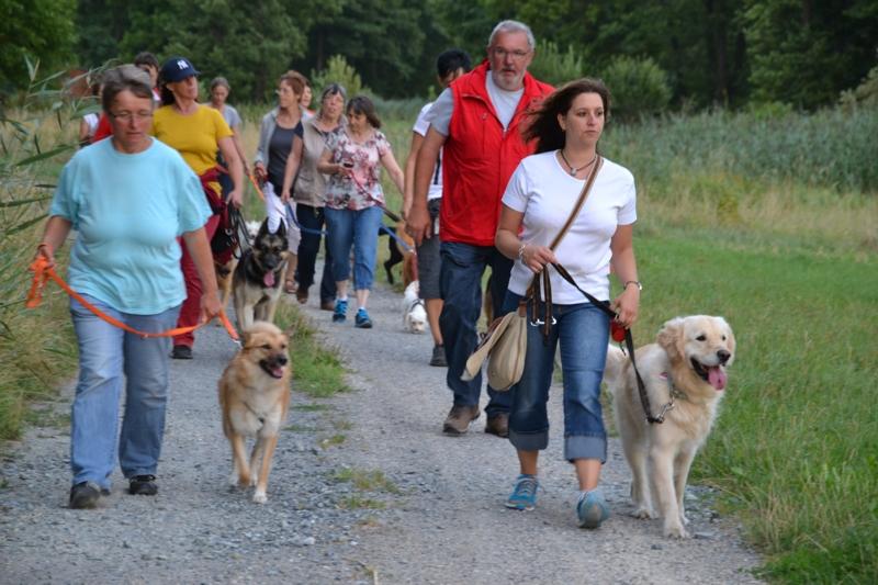 On Tour in Speinshart: 4. August 2015 - DSC_0072.JPG