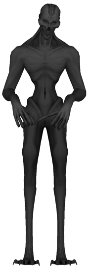 SCP 966