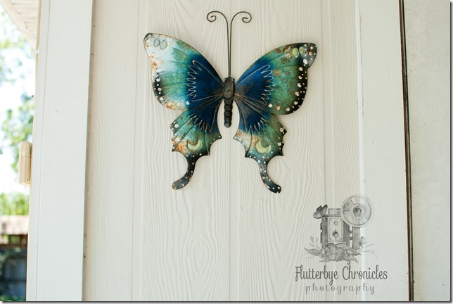 Metal butterfly on wall original for artistic metal (©Jenny @ Flutterbye Chronicles)