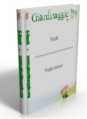 Manuale A A.V V.- Giardinaggio ( Frutti-Minori)  N/D Ita