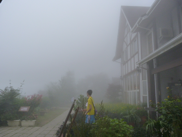 TAIWAN.Hsinchu et une minuscule partie du parc national de Sheipa, l empire du brouillard... - P1070831.JPG