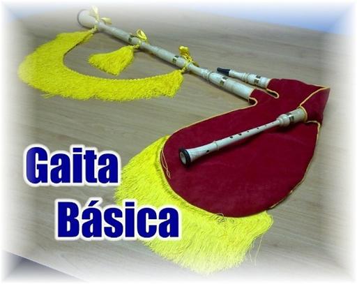 VENDO GAITA BASICA, construída(639)