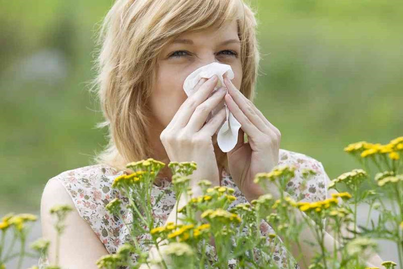 Home Remedy for Cold allergy