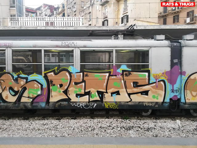 petos (1)