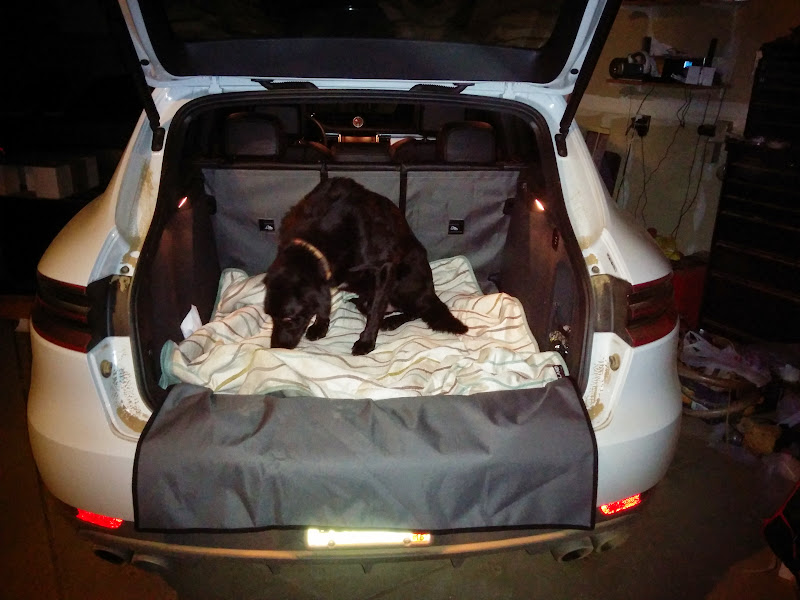 anyone get back seat covers for dogs yet?? - page 5 - porsche