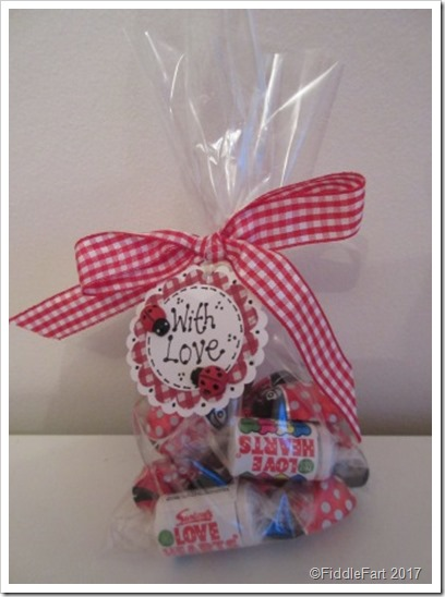 Lovebug Ladybird Valentines Sweet Candy Bag Favor.