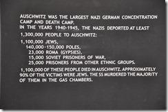 9 Auschwitz victimes