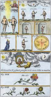 Engraving 2 From Drey Curieuse Chymische Tractalein 1704, Alchemical And Hermetic Emblems 2