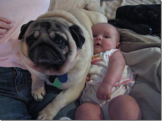 niña con perro (8)