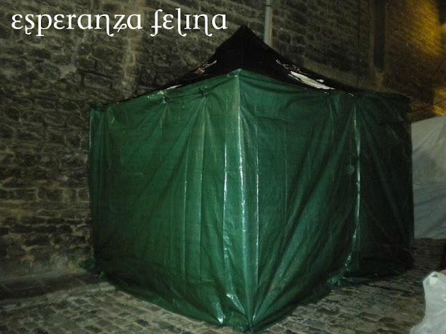 Esperanza Felina en el mercado Medieval de Vitoria  DSCN5732