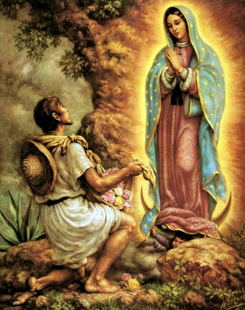 Guadalupe  Juandiego  Our Lady Of Guadalupeday Of Our Lady Dec   Pinterest  Dia De