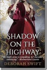 shadow on the highway_thumb