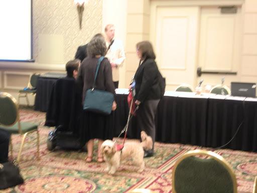 会場で見た介助犬