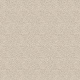 D 4829 SM Piasek jasny.jpg