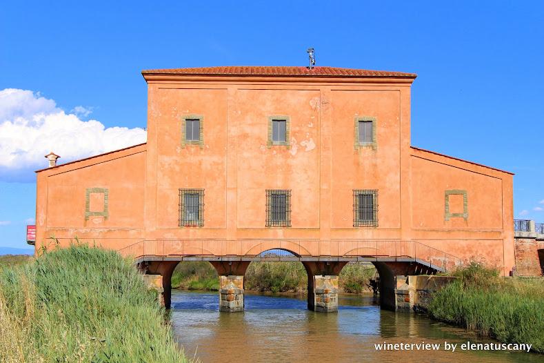 casa rossa ximenes, maremma, diaccia botrona, castiglione della pescaia, provincia di grosseto