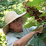 Karen Creel (GardenChick)'s profile photo