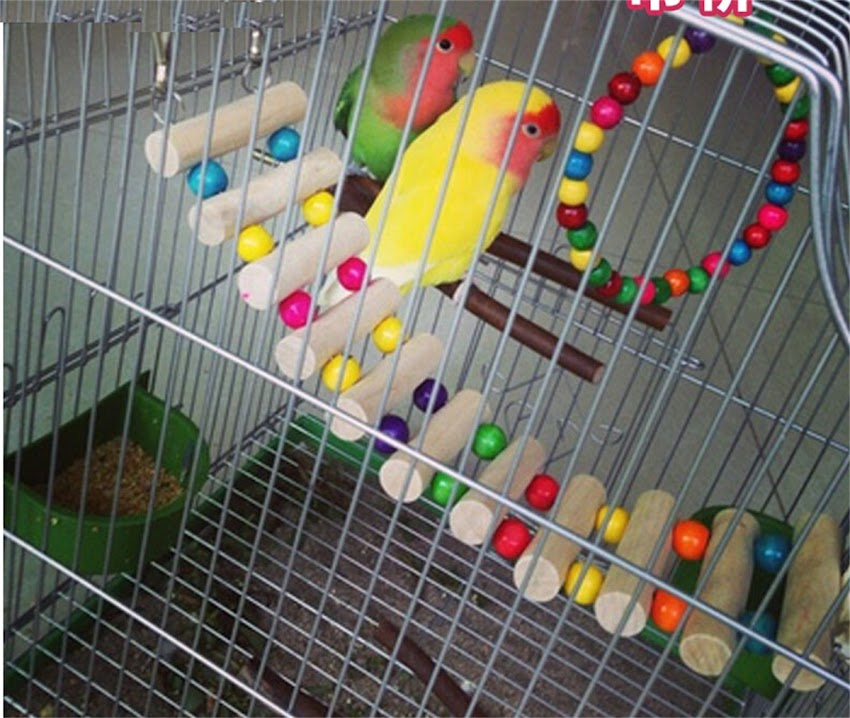 Hängebrücke leiter hamster papageie vogel holzleiter