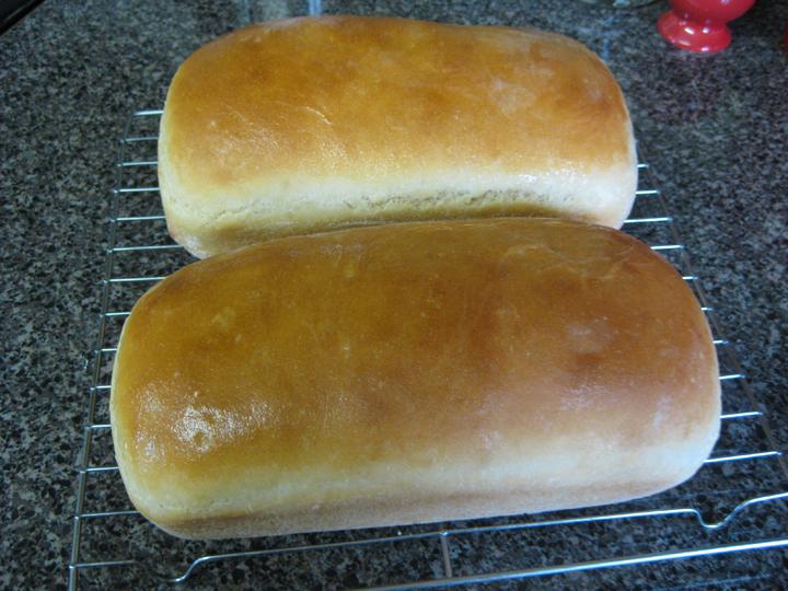 The Test Nest White Bread Sponge Method