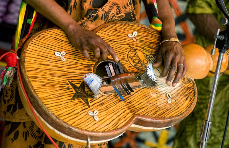 Afrikafest 2014 Teil1 - 014.jpg