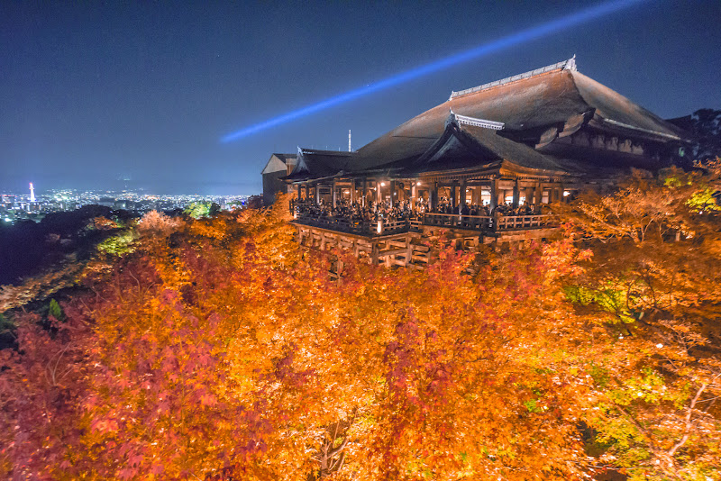 京都 紅葉 清水寺 ライトアップ 写真2