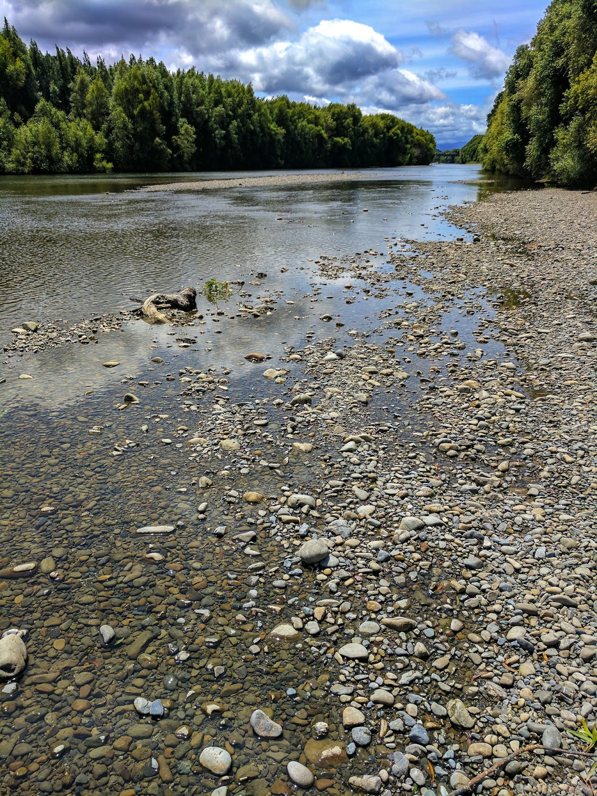 The Hutt River (southern North Island, NZ