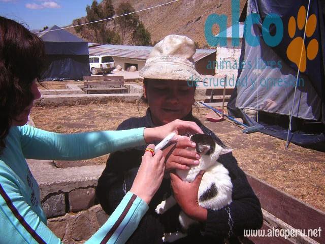 Asistencia Huancavelica por terremoto 2007 (15)