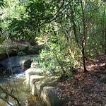 Little Falls (134197)