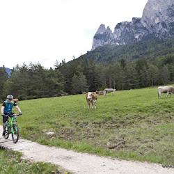 Hofer Alpl Tour 17.05.16-6743.jpg