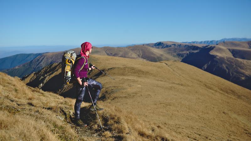 Castigand inaltime spre varful Urlea, asezat cu putin sub 2500 de metri.