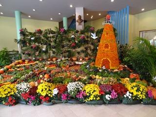 2016.09.11-011 exposition des jardns ouvriers