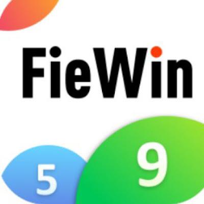 Fiewin website