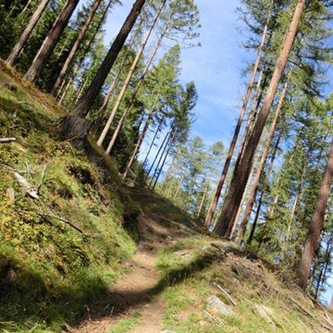 Hauswanderung zur Kreuzspitze & Saxalbsee im Schnalstal - Schulerhof September 2016