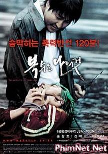 Phim Báo Thù 2002 Full Hd - Sympathy For Mr.vengeance