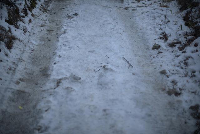 三つ峠 凍結