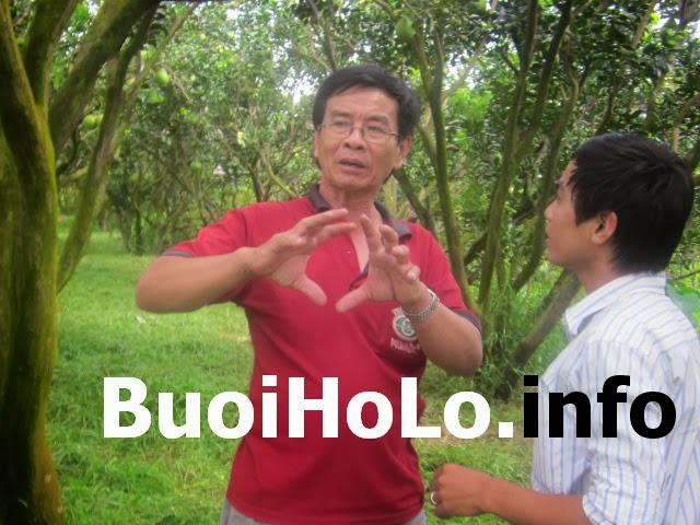 CACH-BAO-QUAN-BUOI-HO-LO-TAI-LOC-NHU-THE-NAO