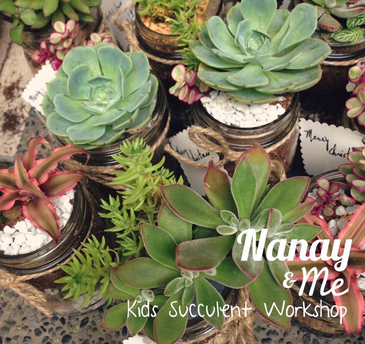 Succulent nanayandme2